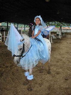Top 20 des chevaux déguisés les plus insolites (mais on sait pas trop pourquoi)   Topito