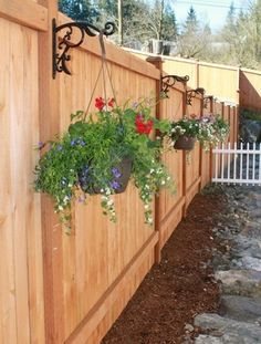 Backyard Privacy Fence Landscaping Ideas On A Budget 241 Hinterhof-Privatleb Privacy Fence Landscaping, Backyard Privacy, Backyard Fences, Garden Fencing, Backyard Projects, Landscaping Ideas, Privacy Fences, Diy Fence, Patio Ideas