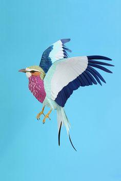 paper craft bird dianabeltranherrera.com