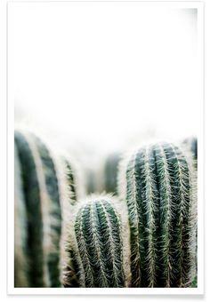 Cactus 1 als Premium poster door Mareike Böhmer | JUNIQE