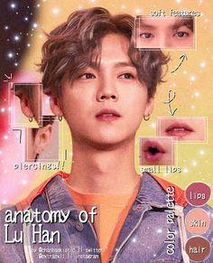anatomy edit picsart - anatomy edit ` anatomy edit aesthetic ` anatomy edit kpop ` anatomy edit tutorial ` anatomy edit picsart ` anatomy edit bts ` anatomy edit overlay ` anatomy edit now united Hunhan, Kyungsoo, Luhan Weibo, Kris Exo, Big Bang Top, Face Swaps, Journal Aesthetic, Skin To Skin, Kim Junmyeon