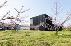 Courtyard House in Peach Garden / Takeru Shoji Architects