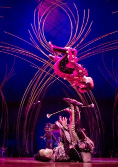 Athletes climbing poles, with their bodies parallel to the ground… Gymnasts flipping and twisting, from a sitting position… and a show that does not slow down from start to finish.  Cirque du Soleil's Amaluna is really really good.