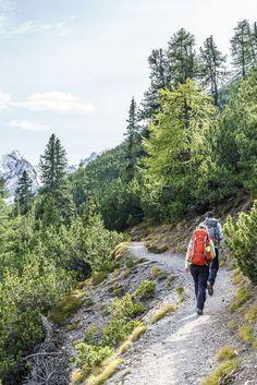 Wandern im Val Cluozza, Engadin Hiking, Mountains, Nature, Travel, National Forest, Photo Illustration, Walks, Naturaleza, Viajes