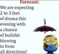 Haha, this happened every day lol Minion Jokes, Minions Quotes, Funny Minion, Minion Sayings, Funny Signs, Funny Jokes, Minions Love, Minions 1, Sarcastic Quotes