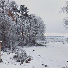 #lepavillondelorangerie with #snow#landscape#burgundy#beaune#aureliegueniffey#gardendesigner Bed And Breakfast, Photos, Burgundy, Snow, Orange, Landscape, Instagram, Outdoor, Gardens