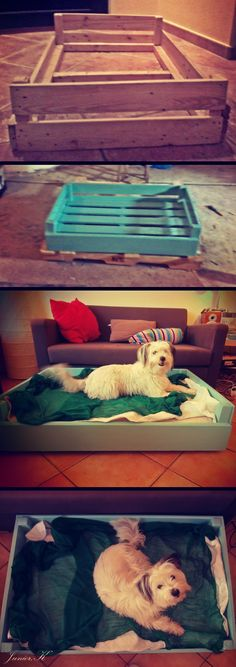 dog bed | DIY pallet Diy Dog Bed, Diy Bed, Diy Pallet, Doggies, Projects, Animals, Home Decor, Little Puppies, Log Projects