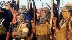 Truth Talk News: THE TERRORIST HANDBOOK
