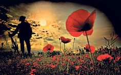 Lest we forget: Remember WW1 pays tribute to the women on the home front who served on the land and in hospitals, as well as the servicemen ...