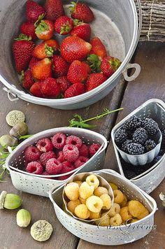 Nourishing berries