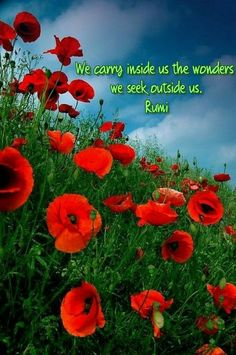 We carry inside us the wonders we seek outside us.' ~Rumi #rumi #rumiquotes #quotes #we #carry #inside #us #wonders #seek #outside #wonder #wonderous #love #life #lovelife #yourself #live #livelife #quote #meme #memes #quoteof #memesdaily #poppies #tuesdaymemes #red #tuesdaythoughts #tuesday #poppy #redpoppy #quotesdaily