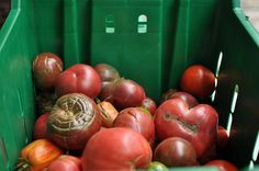 Tips for preserving all those tomatoes from your garden -- thanks to a roundp-up from Food in Jars.