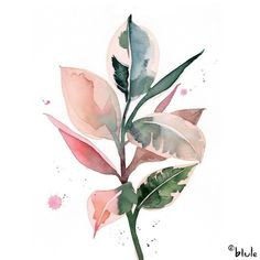ilustration flowers ~ ilustration flowers + ilustration flowers black and white + ilustration flowers watercolors + ilustration flowers design Easy Flower Painting, Flower Painting Canvas, Plant Painting, Plant Art, Flower Art, Watercolor Plants, Watercolor Paintings, Simple Watercolor, Tattoo Watercolor