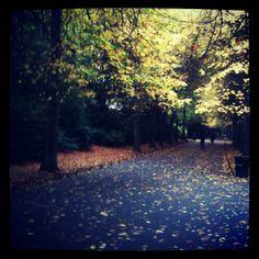 Autumn - St Stephen's Green Dublin
