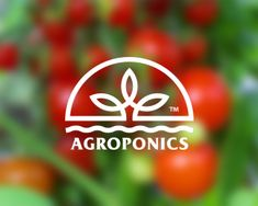 AGROPONICS Designed by Stulgin | BrandCrowd $250 #agro #eco #greenhouse…