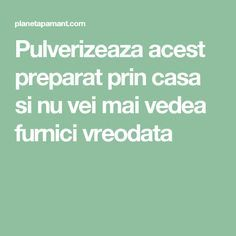 Gardens Discover Pulverizeaza acest preparat prin casa si nu vei mai vedea furnici vreodata Good To Know Cleaning Hacks Diy And Crafts Tips Design Healthy Amazing House Houses Hacks Diy, Cleaning Hacks, Good To Know, Diy And Crafts, Healthy, Interior, House, Medicine, Houses