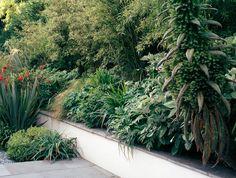 london-garden-6  jinny blom