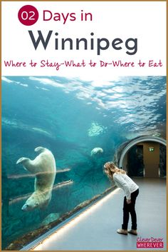 These can't miss things to see and do in Winnipeg, Manitoba only scratch the surface. Winnipeg is the perfect Canadian getaway for a couple of days! Calgary, Vancouver, Backpacking Canada, Toronto, Visit Canada, Canada Trip, Canadian Travel, Travel, Vacation