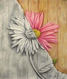 A REAL FLOWER Prismacolor and Graphite Drawing by TheDoodleBucket, $45.00
