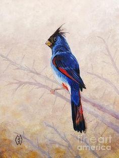 Custom Paint, Deserts, Mexico, Fine Art, Bird, American, Painting, Animals, Animales