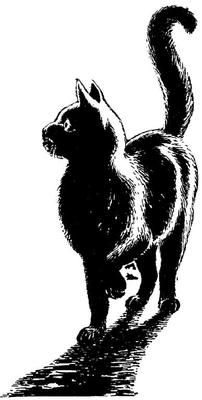 NIGHT CAT with shadow- UNMOUNTED RuBBer STaMP by Cherry Pie