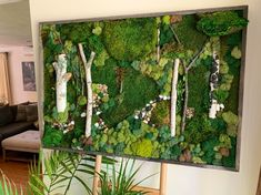 """Excited to share this item from my shop: The """"Canopy"""" - Living Wall Moss Art. Real Preserved Moss w/Birch Branches in Barn wood Frame. Home/Office Decor. No Maintenance. Moss Wall Art, Moss Art, Diy Wall Art, Wall Decor, Black River Rock, Birch Branches, River Stones, River Rocks, Barn Wood Frames"""