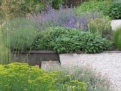 Een heerlijke mediterrane beplanting in deze grote tuin ontworpen door…