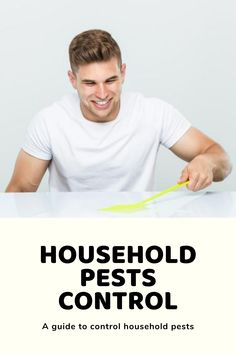 They are mostly found in both residential and commercial properties. Pests can create several problems in your daily life if they are not controlled properly. Household Pests, Small Insects, Pest Control, Commercial, Create, Life