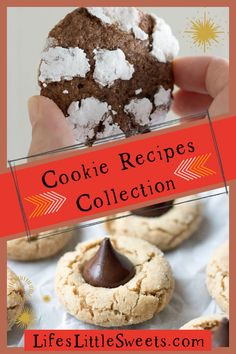 Cookie Recipes Collection - Here we have a collection of 34 different cookie recipes on our blog, and just in time for the holidays. #cookies #cookierecipe #chocolatecrinkles #holiday #Christmas #potluck Best Homemade Cookie Recipe, Homemade Peanut Butter Cookies, Spritz Cookie Recipe, Oatmeal Coconut Cookies, Delicious Cookie Recipes, Sweets Recipes, Yummy Cookies, Easy Desserts, Chocolate Chip Cookies