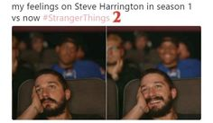 Steve Harrington is such a proud little mama