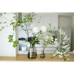 Green Flowers, White Flowers, Beautiful Flowers, Green Wreath, Glass Design, Ikebana, Flower Vases, Planting Flowers, Floral Arrangements