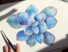 Succulent watercolor Succulents, My Arts, Watercolor, Etsy, Pen And Wash, Watercolor Painting, Succulent Plants, Watercolour, Watercolors