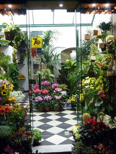 flower shop - love the checkerboard floor