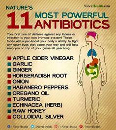 Nature's 11 Most Powerful Antibiotics!