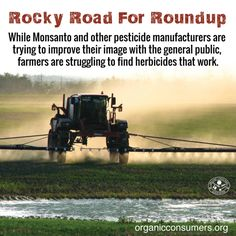 More and more farmers are turning away from Roundup and other poisonous weed-killers as the weeds plaguing their crops become resistant. #Ag #BanGlyphosate #MonsantoMakesUsSick Monsanto Company