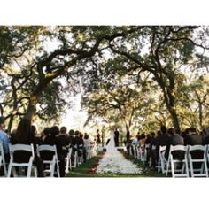 Love the trees...this will be my wedding