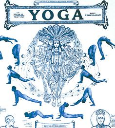 Begineer Intermediate Yoga Course Chart