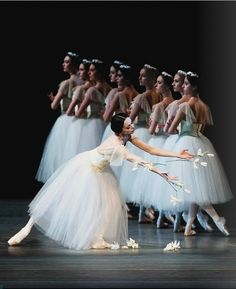Okay, I'm going with a ballet theme for my spring break, I would see their spring preformances at American Ballet Theater in NYC, what a dream.  #BeautyBridge