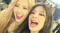 Kim Jennie, Rose Video, Blackpink Video, Black Pink Kpop, Black Pink Rose, Blackpink Funny, Lisa Blackpink Wallpaper, Blackpink Memes, Blackpink Photos