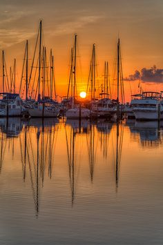 Sunrise Sailboats In St Petersburg, Florida