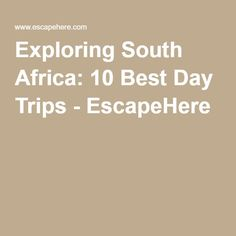 Marine Dynamics Shark Cage Diving Th Wedding Anniversary - Exploring south africa 10 best day trips