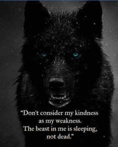 97 EXCLUSIVE wolf quotes that will leave you speechless # speechless . - 97 EXCLUSIVE wolf quotes that leave you speechless - Wise Quotes, Great Quotes, Words Quotes, Quotes To Live By, Motivational Quotes, Inspirational Quotes, Sayings, Quotes Images, Quotes Gate