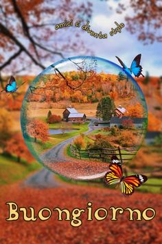 buongiorno autunno Good Morning, Christmas Bulbs, Holiday Decor, Italy, Proverbs, Android, Frases, Sink Tops, Pictures