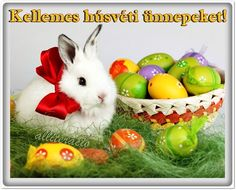 Looking for Easter Images Visit here for Happy Easter Images Easter Pictures Happy Easter Pictures Easter Photos Happy Easter Photos 2017 and Easter Sunday Images