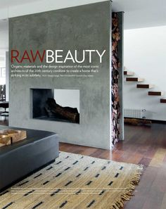 Love this concrete fireplace idea!    image scaned from insite magazine 2010 Winter
