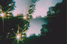 35mm film photography by Krysta-Lee Karenina