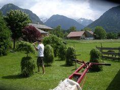 heuernte in den alpen - Google zoeken