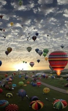 Seriously, I want to go on a hot air balloon SO bad.