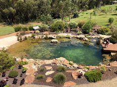 Swimming Pools Backyard, Ponds Backyard, Swimming Pool Designs, Pool Landscaping, Lap Pools, Indoor Pools, Pool Decks, Natural Swimming Ponds, Natural Pond