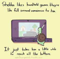 sheldon the tiny turtle